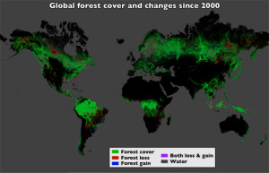 global deforestation 2000-2012 map