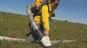 Alaska research insects vacuuming