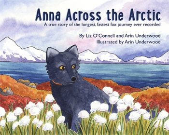 Web Use Anna Book Front Cover
